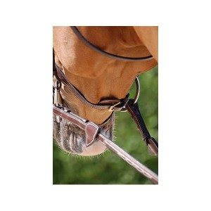 Dy'on Flash Noseband